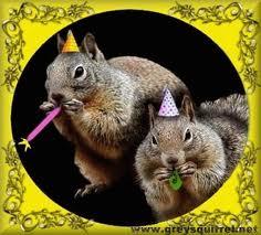 12.29.13 new year squirrel